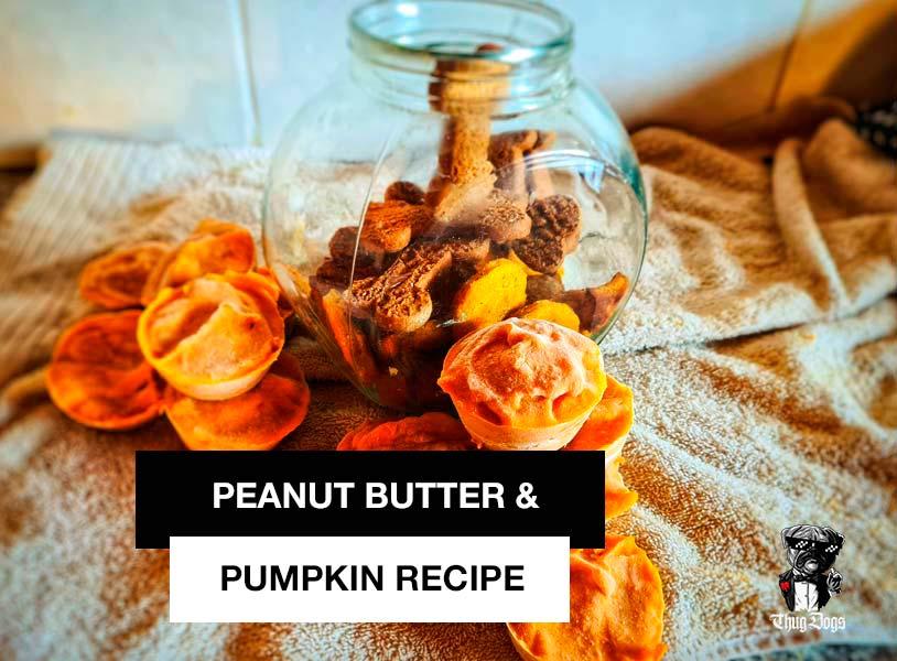 The best peanut butter and pumpkin dog treats recipe homemade