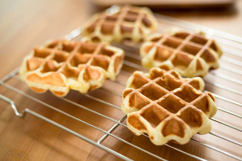 Are plain waffles good for dogs?