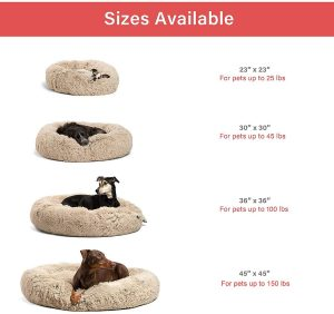 Sheri bed for anxious dogs