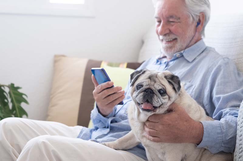 Pug dog sitting with his senior owner on a sofa
