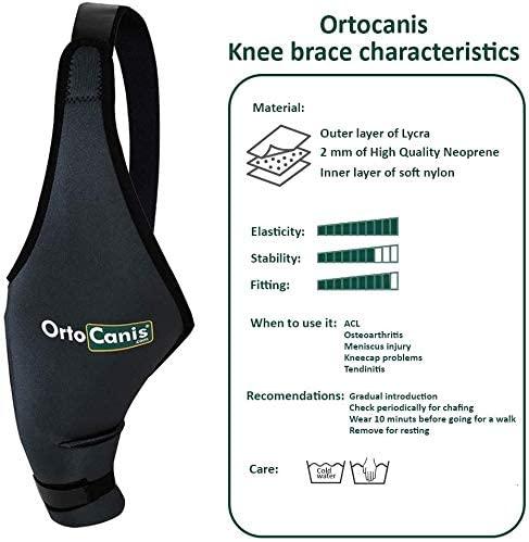 OrtoCanis neoprene dog knee brace