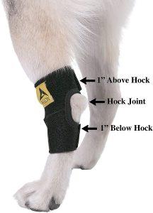 Agon rear hock dog leg brace