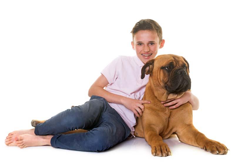 Are Bullmastiffs good with kids?