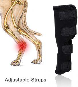 Vanvene extra supportive dog leg brace