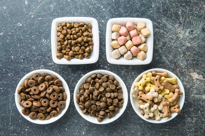 Different Pit Bull dog food