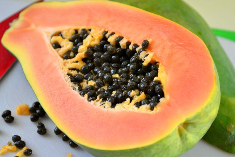 Are fresh papaya seeds good for dogs?